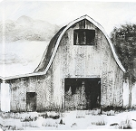 Black and White Barn II