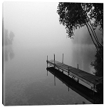 Foggy Dock A