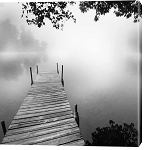 Foggy Dock B