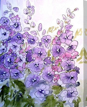 Radiant Delphiniums