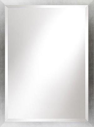 Beveled Mirror - Frame Silv